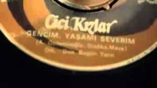 Cici Kizlar   Gencim, Yasami Serevin - Turkish 7\ - 60s