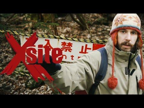 La forêt du suicide (Aokigahara)