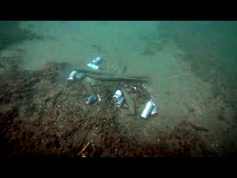 Teen diver says mounds of trash found underwater in Toronto's Humber Bay