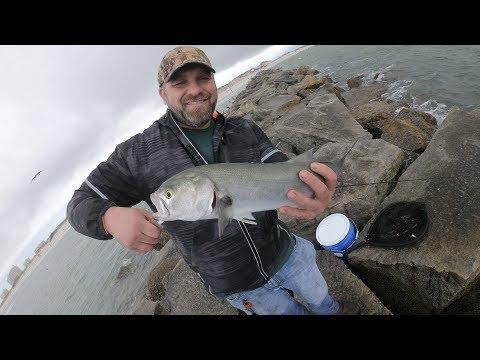 Fishing At New Smyrna Beach In Florida