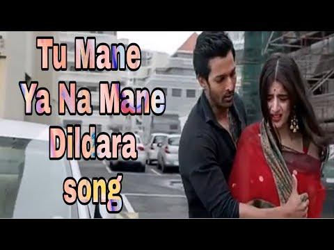 Tu Mane Ya Na Mane Dildara Best Song Video