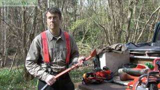 Tools for felling a forestry tree
