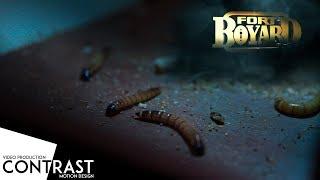 видео Квест Форт Боярд