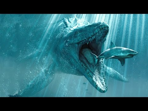 Top 10 Mysterious Deep Sea Creatures Caught On Tape