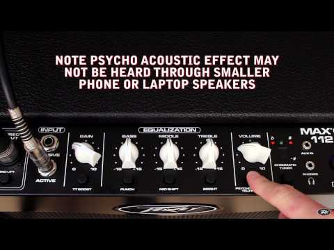 Peavey Max 112 Bass Amplifier Overview