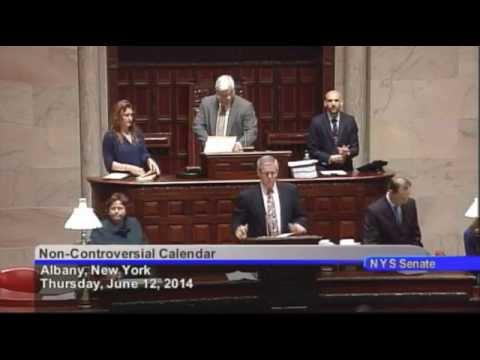 New York State Senate Session - 06/12/14