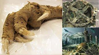 বিশ্বের আটটি রহস্যময় প্রত্নতাত্ত্বিক আবিষ্কার | Archaeological discovery