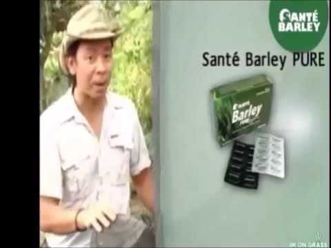 Santé Barley International   Product and Marketing Plan Pres