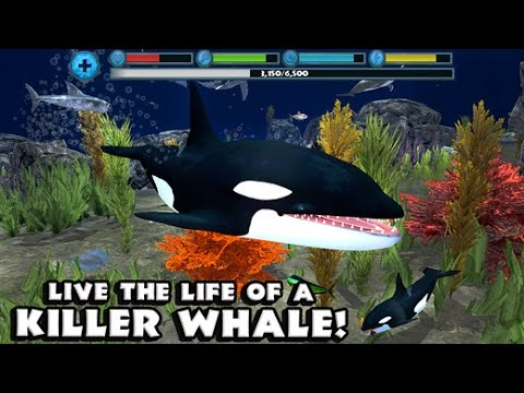Orca Simulator By Gluten Free Games -Compatible with iPhone, iPad, and iPod touch, Android
