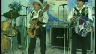 Play Volo La Paloma