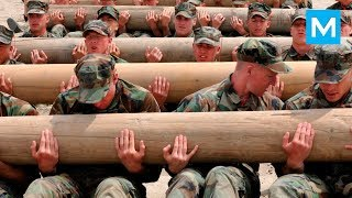 US Marines Real Workouts | Muscle Madness