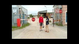 видео Новости КОЛАКС