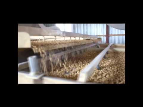 Зерно. Подготовка семян от Фадеева.