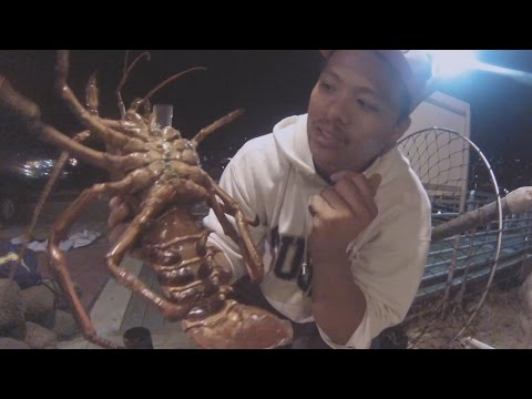 How to clean spiny lobster doovi for Lobster fishing san diego