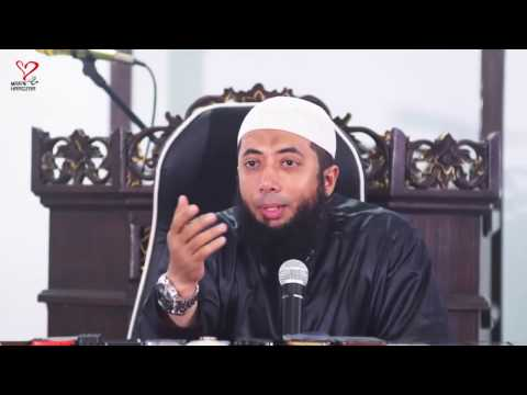 bolehkah-di-islam-memelihara-kucing-?---ustadz-khalid-basalamah