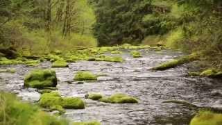 2015 Eugene, Cascades & Coast Destination Award - Willamette National Forest