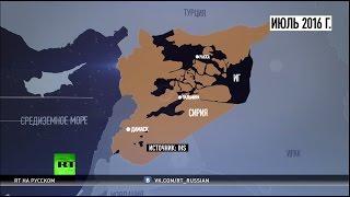 Борьба за мир: как военная операция России изменила ситуацию в Сирии