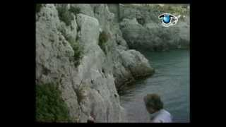 Savona  (città e dintorni) Liguria Italia