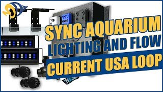Sync Aquarium Lighting and Flow with the Current USA Loop