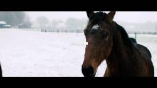 William Araujo - Loco Riba Bo Trailer #1