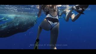 Sperm Whale Playing with people in ocean Water