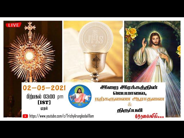 02-05-2021 | 03:00 pm (IST) முதல் | இறை இரக்கத்தின் ஜெபமாலை, ஆராதனை & திருப்பலி| AKI