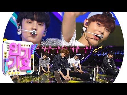 TXT(투모로우바이투게더) - CROWN(어느날 머리에서 뿔이 자랐다) @인기가요 Inkigayo 20190317