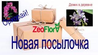 """Обзор посылки из группы """"ОрхоРай""""!"""