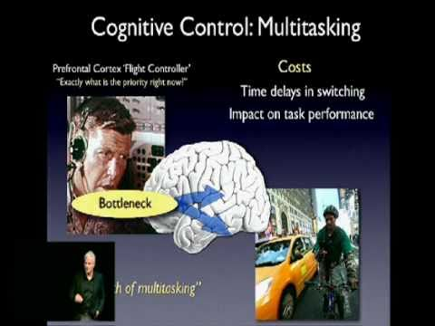 TEDxSanJoseCA - Adam Gazzaley, MD, PhD - Brain: Memory and Multitasking