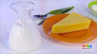 Аллергия на молоко и непереносимость лактозы: в чем разница. Жить здорово! 10.10.2019
