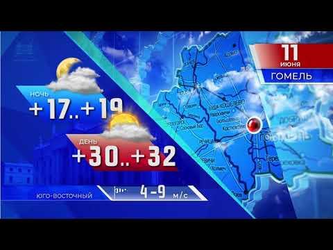 Прогноз погоды по Беларуси на 11 июня 2019 года