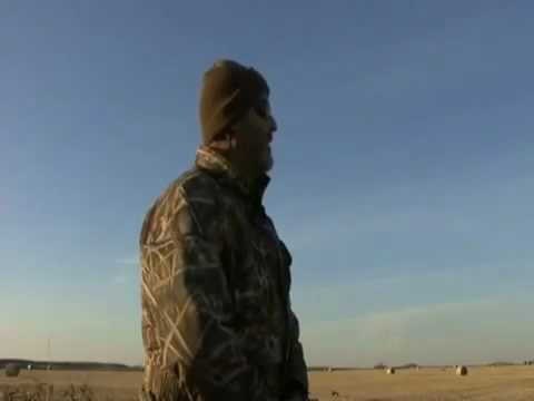 Canadian Goose Hunting - Saskatchewan Honker Hunts with Pacific Wings Prairie Outiftters