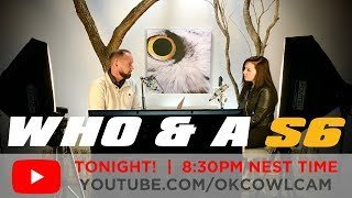 S6   Who & A Show LIVE   Episode 2