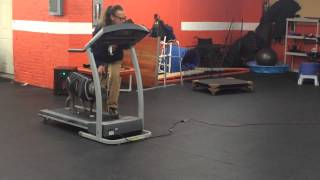 How To Treadmill Pit Bull Diy Dog Training Solid K9 Training