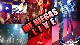 Baby Rasta Y Gringo - Me Niegas  Live - 2013