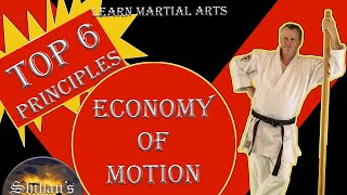 Top 6 Principles for Economy of Motion in Martial Arts Training