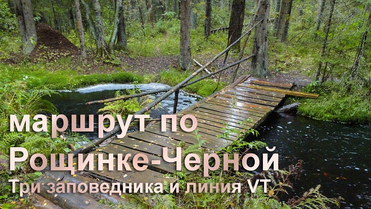 Поход по реке Рощинке-Черной (три заповедника и линия VT) маршрут