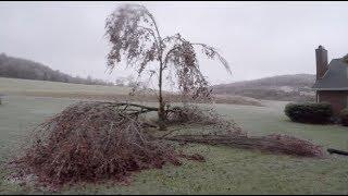 What a beautiful... Mess! Destructive ice storm!