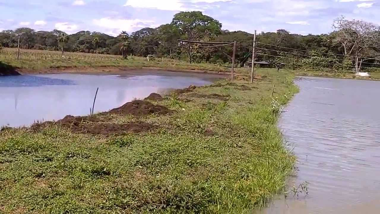 Lagunas para cr as de cachamas tus comentarios dond for Como construir una laguna artificial