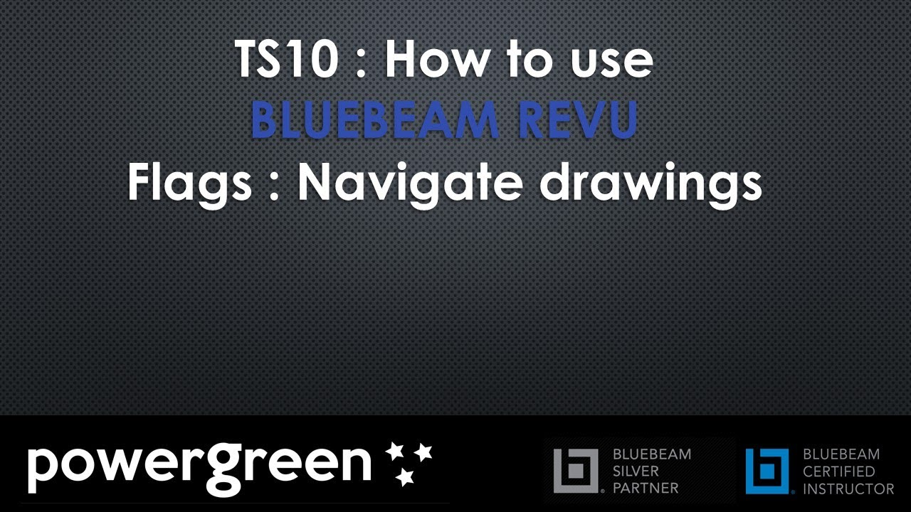 TS10 : How to use Flags to navigate drawings