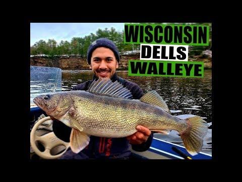 Wisconsin Dells Walleye Fishing [WARNING MONSTER WALLEYE]