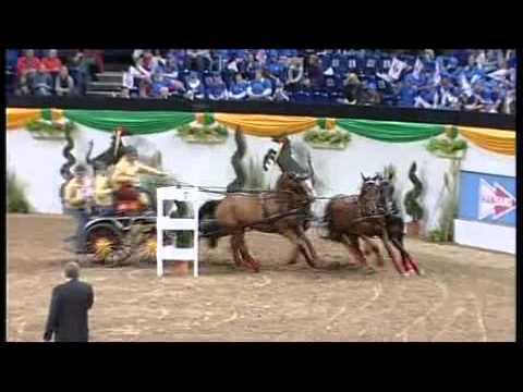 Baltic Horse Show 2011 - Hansano Fahrduell: Michael Freund