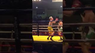 Alamo becomes WBC Youth world champion