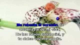 ALEX CAMPOS - ME ROBASTE EL CORAZON (karaoke)