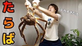 巨大タラバガニの固い殻を一瞬で剥く方法はこれだ!!【タラバガニのさばき方】