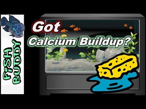 How To Get Rid Of Calcium Buildup