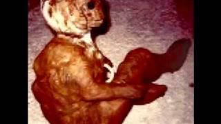 Alien Creature thumbnail
