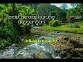 Terapi Rilexsasi Burung Anggungan Berpadu Dengan Suara Air Mengalir Bagus Untuk Burung Macet Bunyi  Mp3 - Mp4 Download
