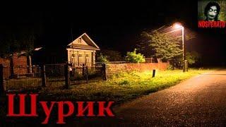Истории на ночь - Шурик