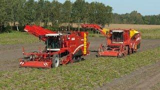 GRIMME | Best of potato harvesting technology 2011